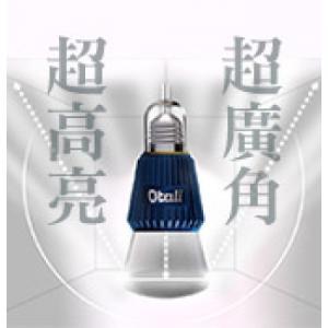 藍寶石10W_2入裝_1